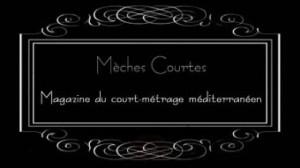 Logo Meches courtes